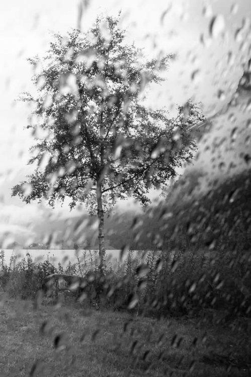 Paysage-noir-et-blanc-pluie-Norvege.jpg